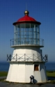 Cyberlights Lighthouses - Cape Mendocino